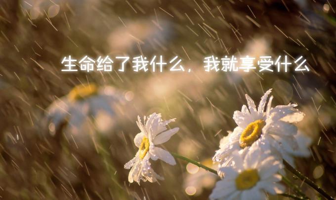 放不下就不要放下,忘不了就先记着吧,总有一天你会发现,在念念不忘中,已经遗忘。<br />
