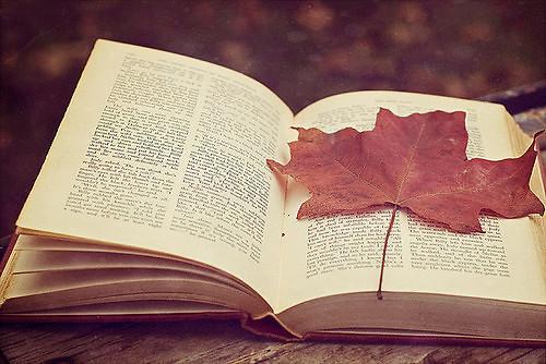 你走之后,一个夏季熬成一个秋,我的信上你的正楷眉清目秀,一字一字宣告我们和平分手好委婉的交流,还带一点征求。<br />