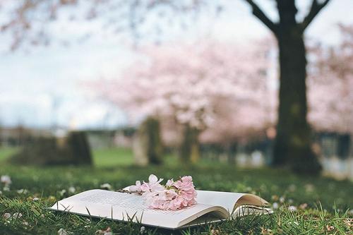 有些话说与不说都是伤害,有些人留与不留都会离开。如果我放弃了、不是因为我输了而是我懂了。<br />